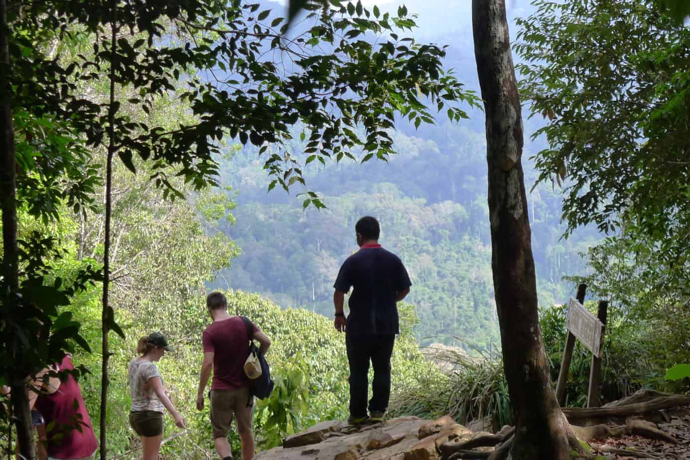 Taman Negara Jungle Trekking