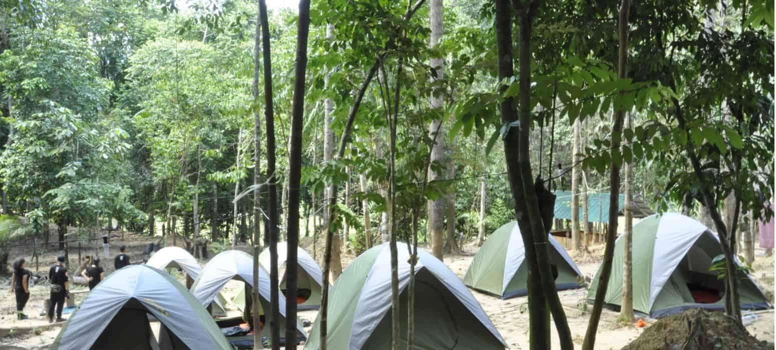 Taman Negara Camping